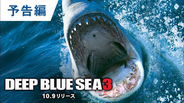 画像: BD/DVD/デジタル【予告編】『ディープ・ブルー3』10.9リリース / 10.7デジタル配信開始 youtu.be