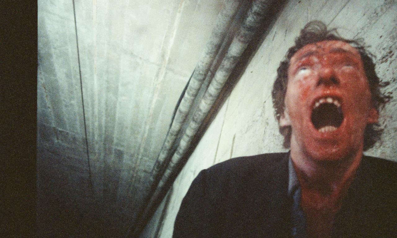画像3: 耐性と覚悟を要する痛恨の衝撃作が国内初 BD・DVD 化!