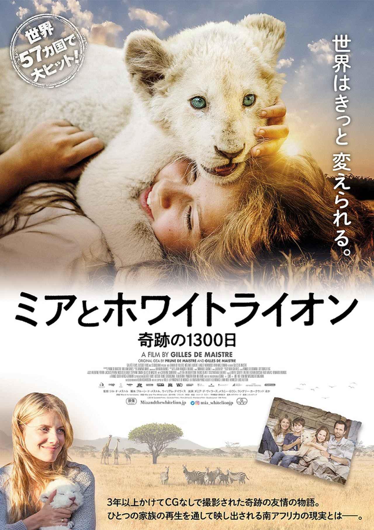 画像: CGなしで少女とライオンの友情を描く奇跡の映画が誕生