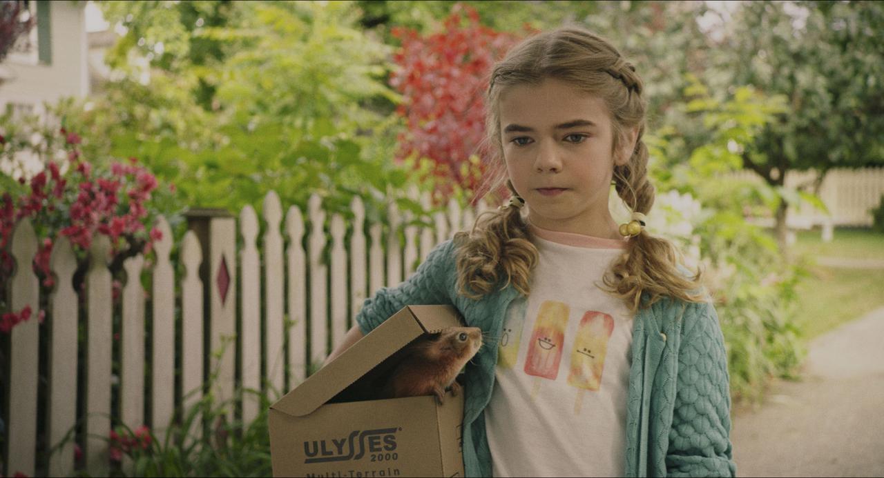 画像: 空飛ぶリスと少女の物語