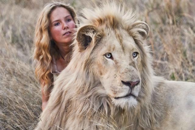 """画像1: """"ライオンの赤ちゃんと子どもたちが育ったら……?""""3年を超える年月をかけて撮影した映画の裏側を監督が明かす!"""