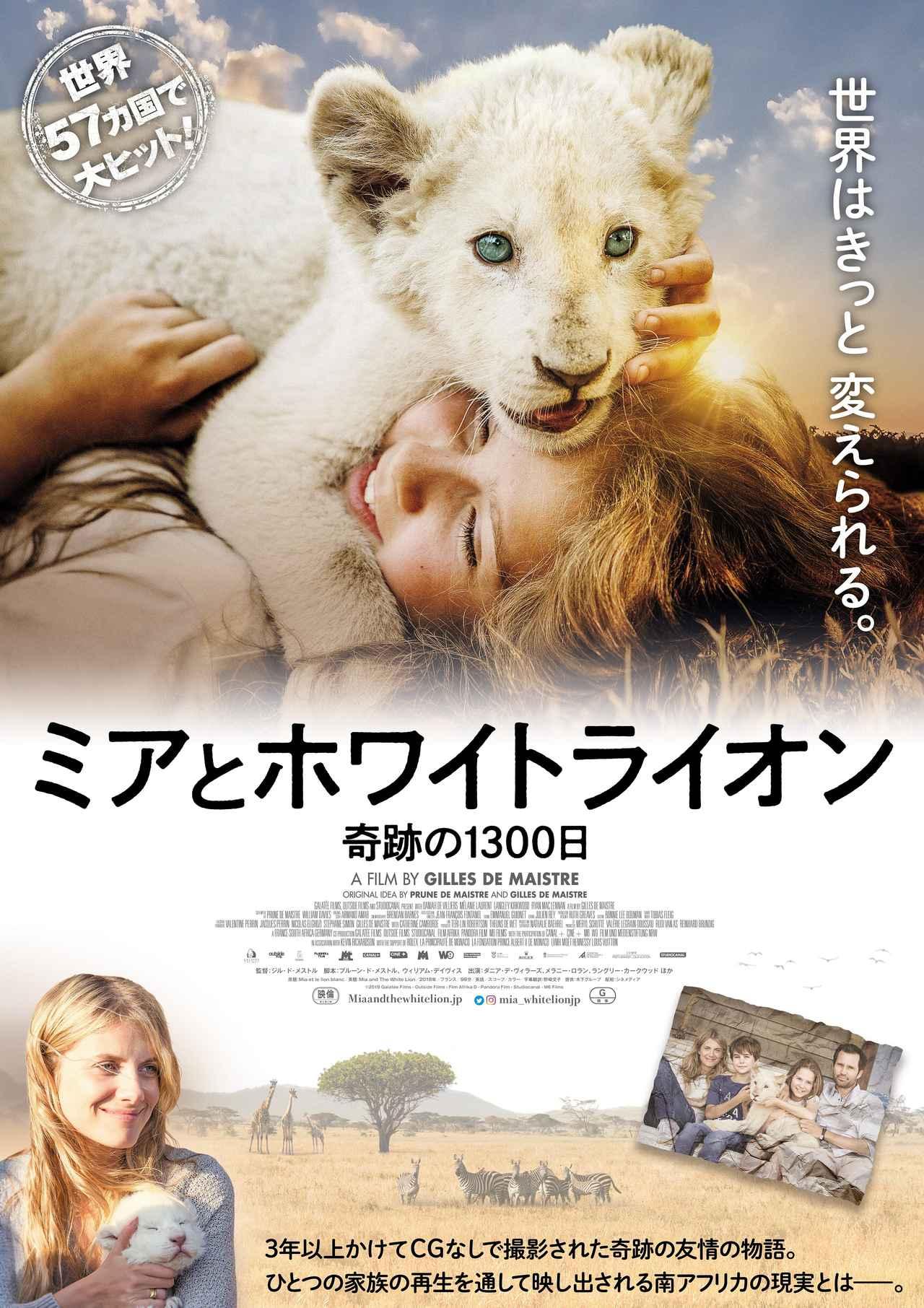 画像: 映画『ミアとホワイトライオン 奇跡の1300日』より、12歳の少女がライオンと心を通わすまでを収めた特別映像第2弾が到着!