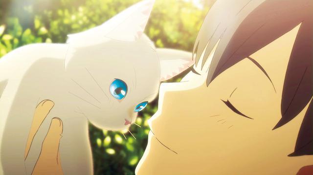 画像: 泣きたい私は猫をかぶる