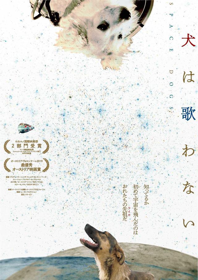 画像: 犬の世界へと誘われる新感覚ドキュメンタリー『犬は歌わない』公開決定
