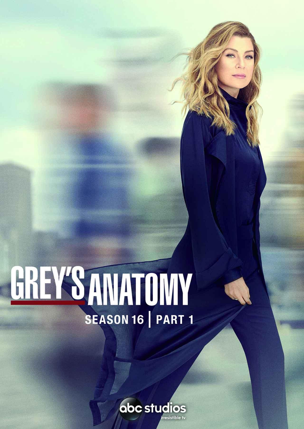 画像: 通算300話突破!『グレイズ・アナトミー シーズン16』が4月21日に配信開始