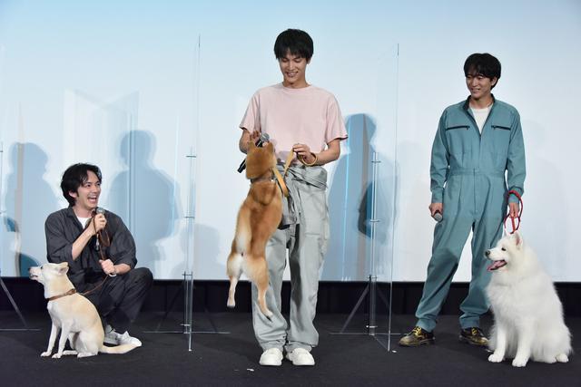 画像: 花子を演じたミックス犬・ちえが元気いっぱいに走り回り、振り回され主演の林遣都ら登場し、挨拶