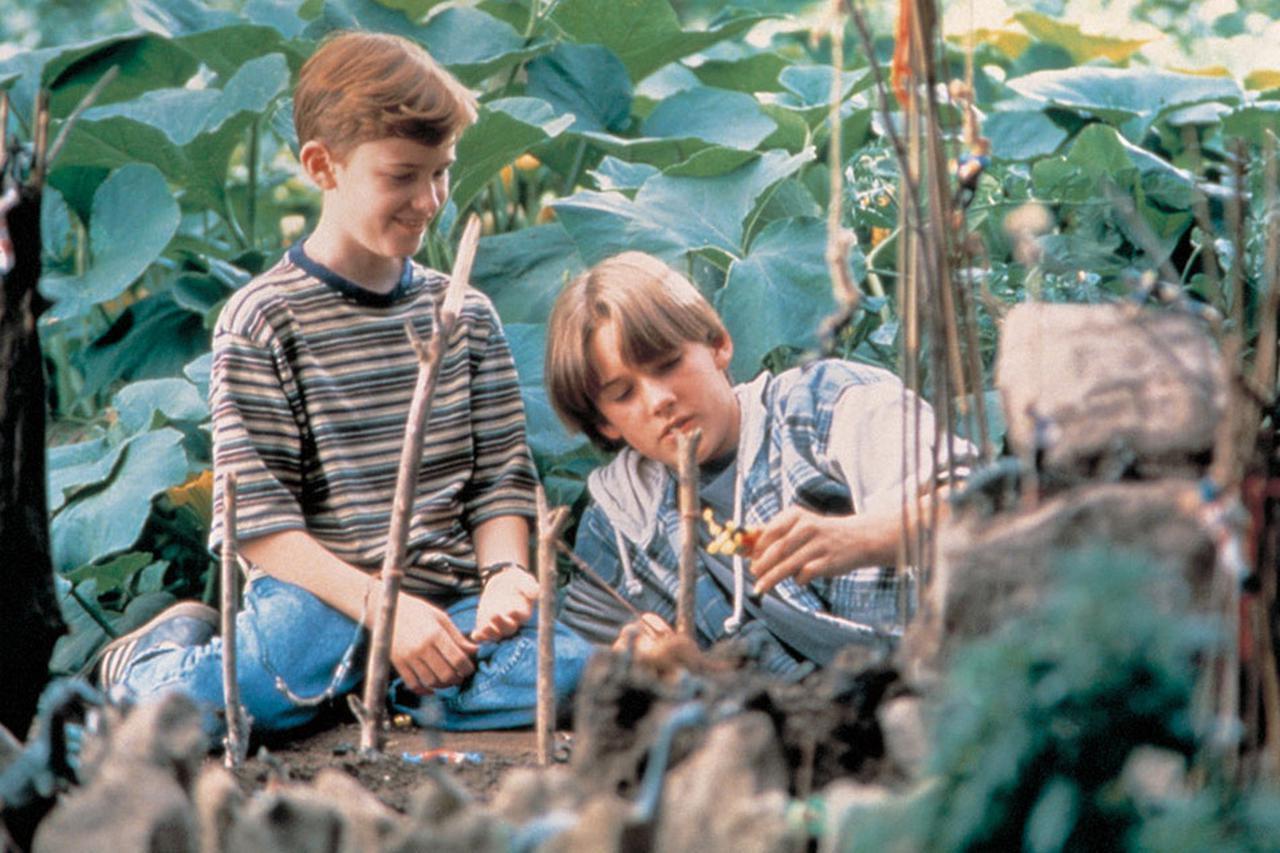 画像2: 孤独な少年がHIV患者である隣家の男の子と友情で結ばれ特効薬を探す旅へ