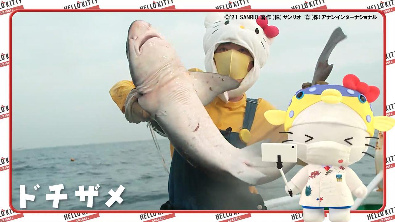 画像2: さかなクンとハローキティのコラボにギョギョギョッ!一緒に漁へレッツギョー!