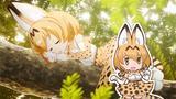画像: TVアニメ『けものフレンズ』主題歌「ようこそジャパリパークへ / どうぶつビスケッツ×PPP」 youtu.be