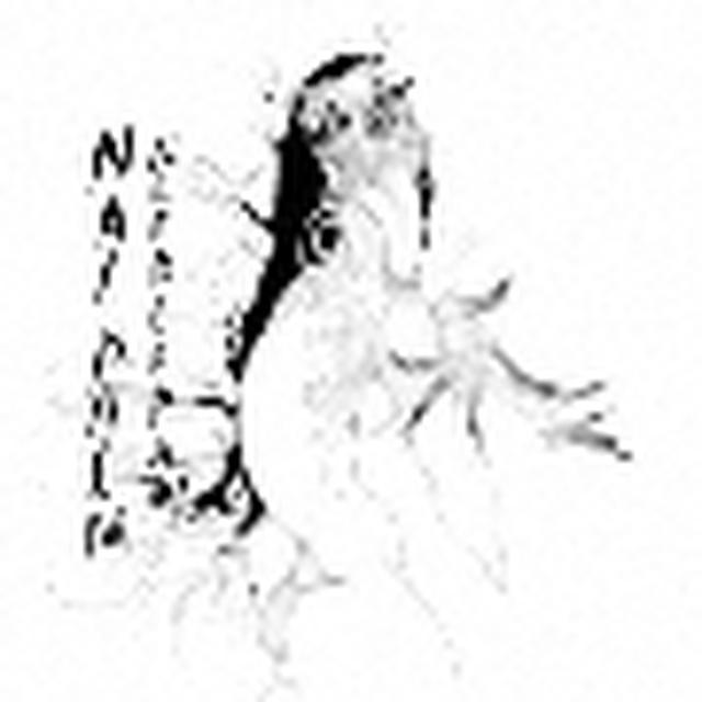 画像: Nai Palm/ニードル・ポー - TOWER RECORDS ONLINE