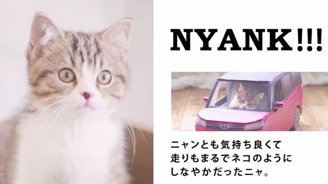 画像: トヨタ自動車株式会社 on Twitter twitter.com