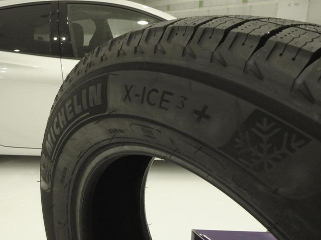 画像: X-ICE3+のサイドウオール。ロゴに「+」と大きく書かれている。