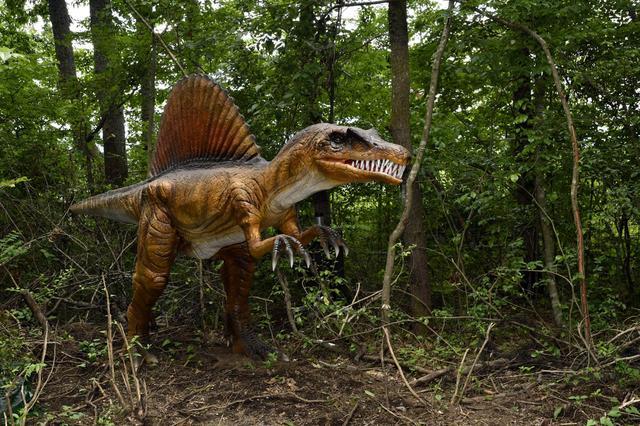 画像: スピノサウルス、ごくごく自然に彼等(彼女達?)は存在しています