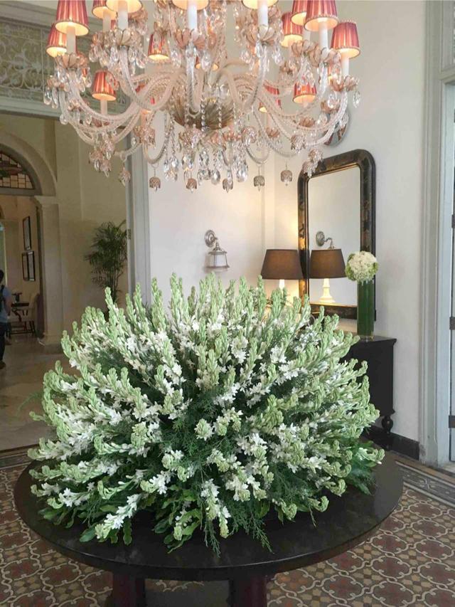 画像: ゲストハウス入口に飾られていた見事な植栽と美しいシャンデリア。歴史の重みを感じさせてくれるデコレーションが建物の随所にありました。