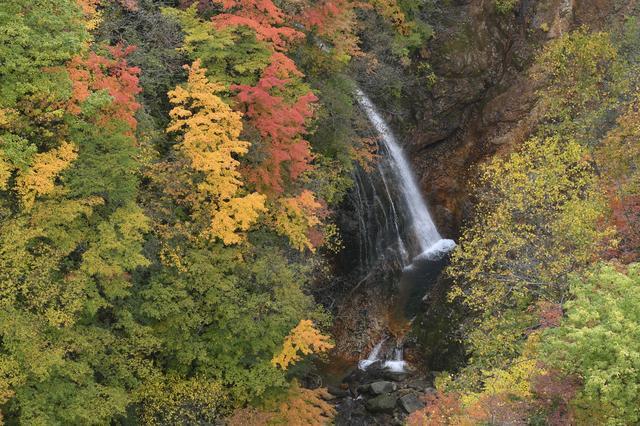 画像: 磐梯吾妻スカイライン、福島市側にある「つばくろ谷」はこんな絶景! でもつばくろ谷なんて、ヤクルトスワローズファンにはたまらない地名ですね。