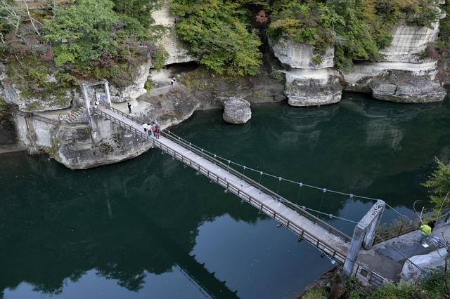 画像: 上にも展望台があって、上から眺めてみました! 吊り橋、カメラマンもネギ編集長も怖いんだって。私はぜんぜん平気。