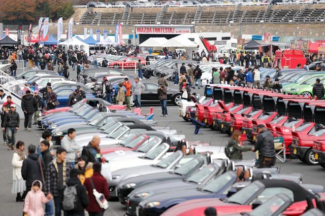 画像: パドックで車種ごとに整列したマツダ車たち。