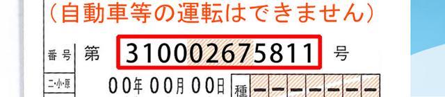 画像: 免許証番号12桁は、運転経歴証明書にも引き継がれる。12桁の意味は上記記事参照。