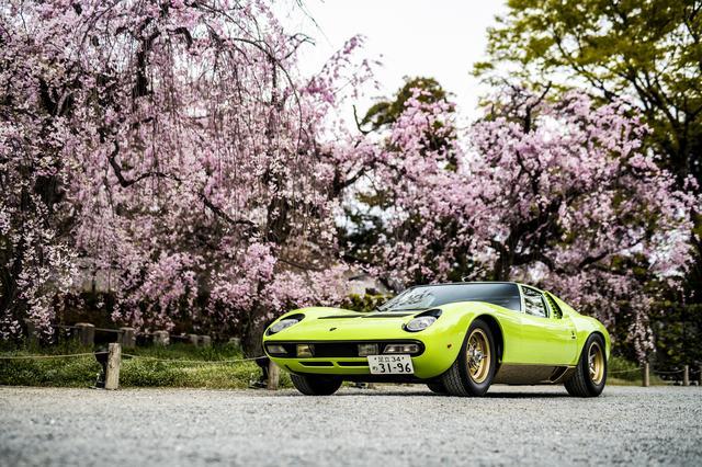 画像: ランボルギーニ1963-1970クラスの優秀賞とベストランボルギーニに輝いた1971年製ミウラSV。ミウラの3世代目でSVは最終発展型だ。