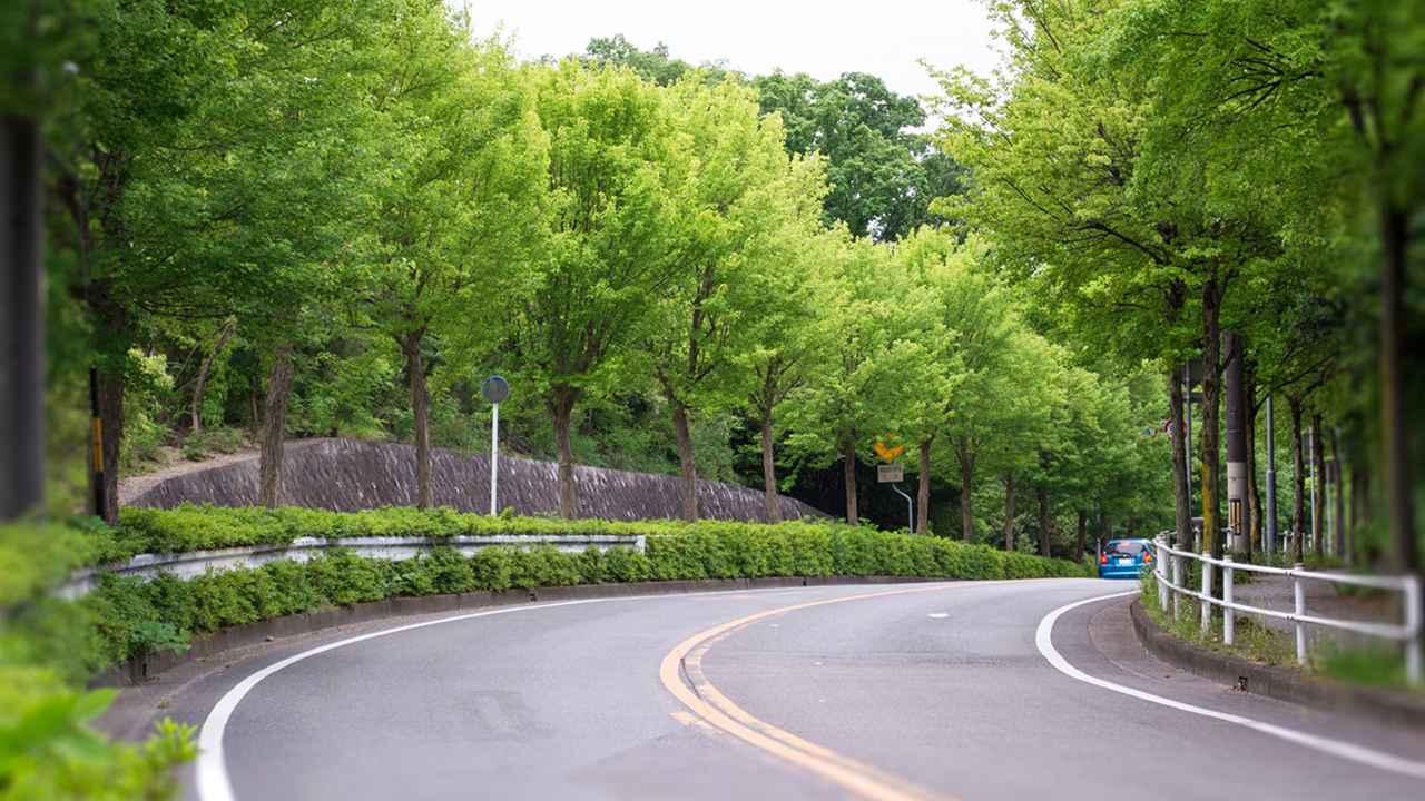 画像3: 【知って得するクルマのクイズ⑩】 今回のテーマは、しっかり覚えておきたい道路交通法です