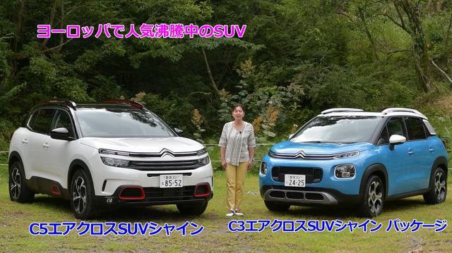 画像1: シトロエンの世界観全開!!