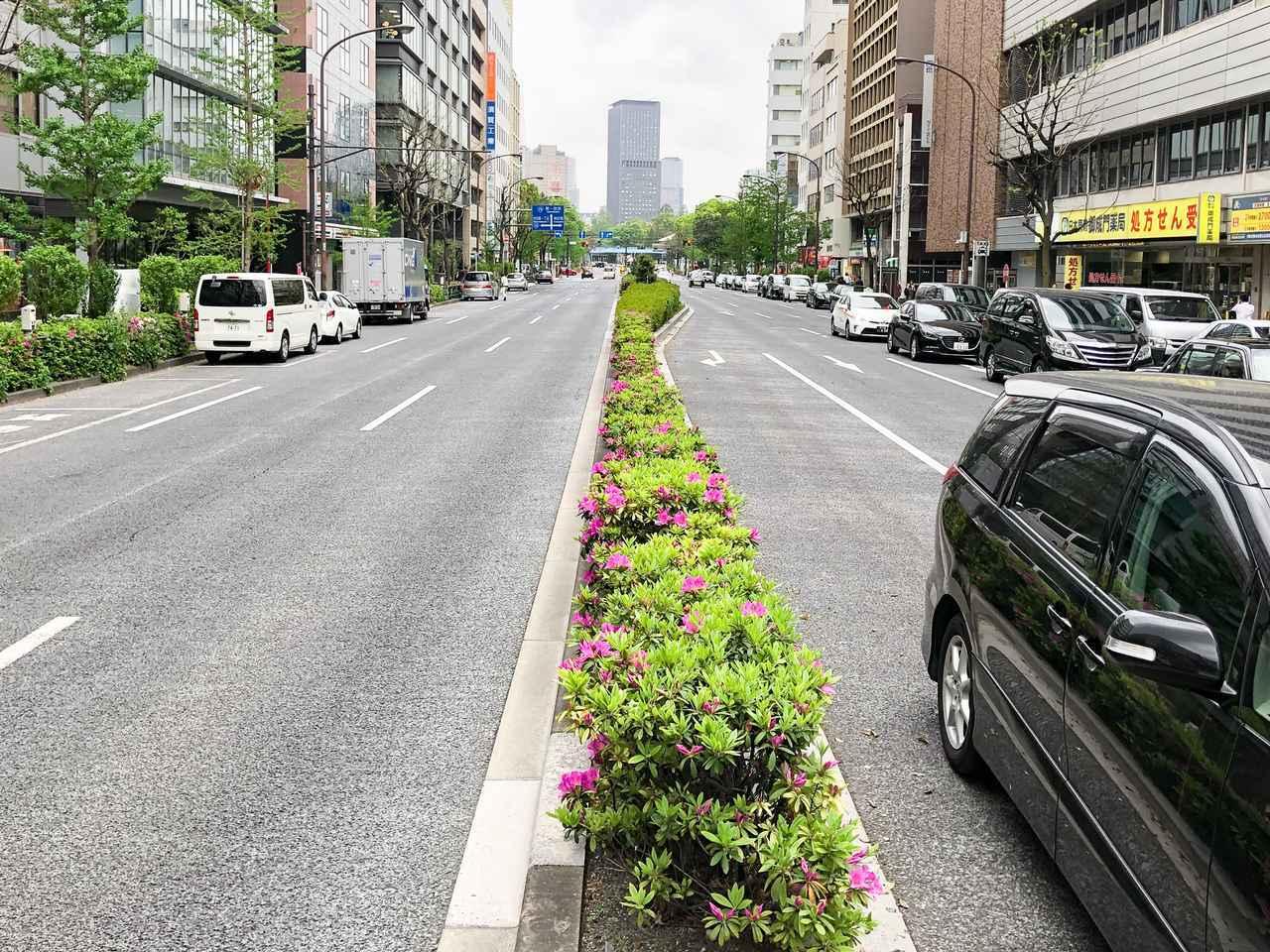 Images : 1番目の画像 - 道路の傾き - Webモーターマガジン
