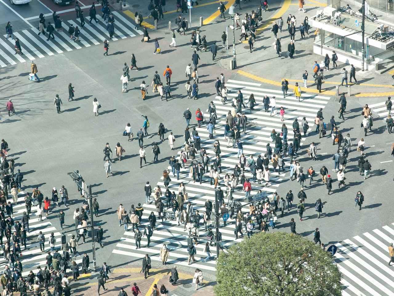 Images : 1番目の画像 - 歩行者が違反キップを切られることがあるって本当? - Webモーターマガジン