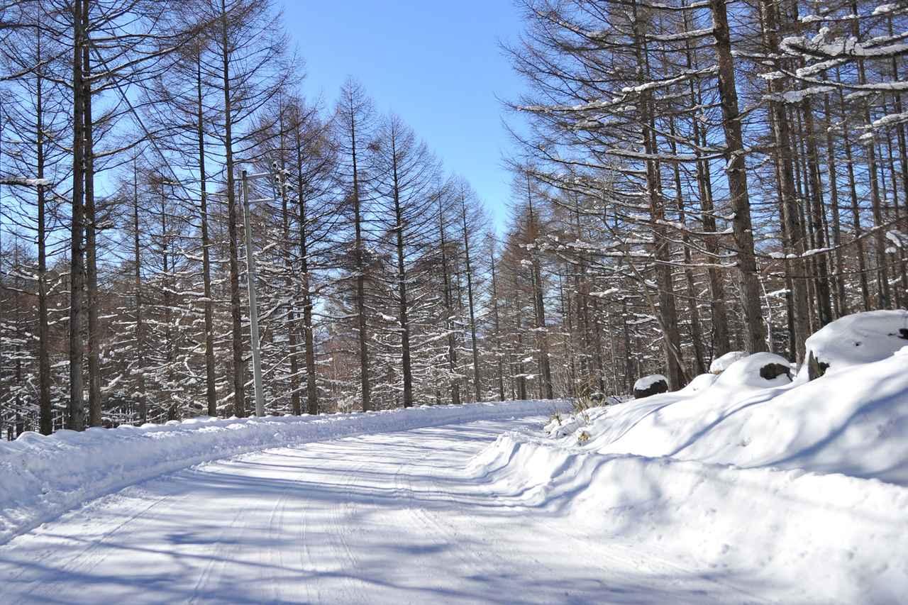 Images : 3番目の画像 - 寒冷地仕様 - Webモーターマガジン