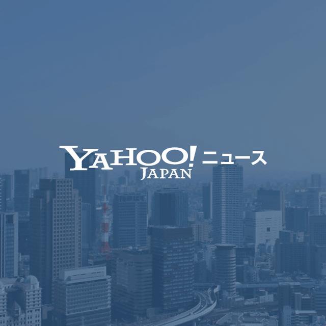 画像: リボルバー、メディア開発ツール「dino」のオーディエンスデータを活用したトレーディングデスク提供開始(Web担当者Forum) - Yahoo!ニュース