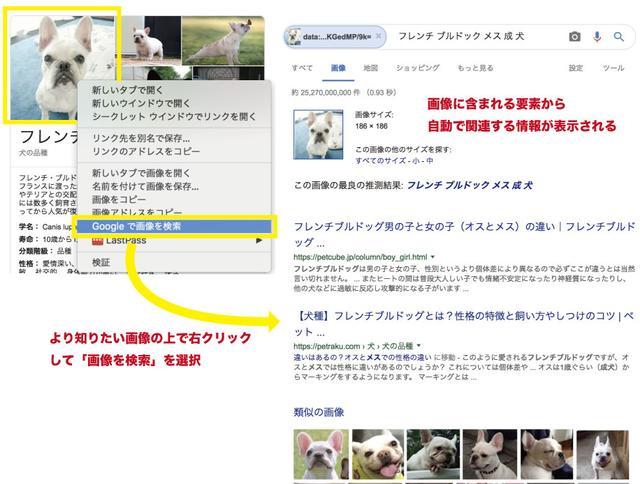 画像: Web上の画像をさらに調べる