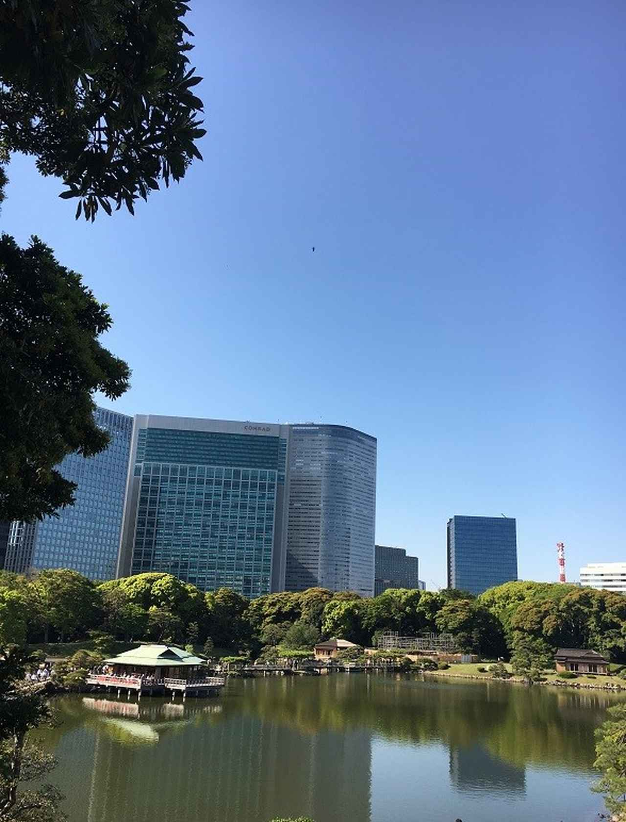 画像: 都内では唯一の海水の池である「潮入の池」