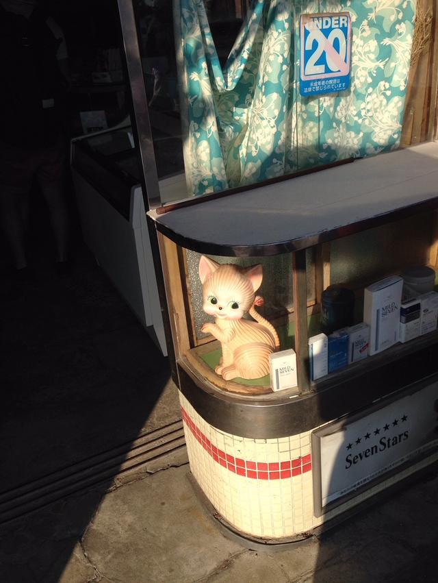 画像: タバコ屋のレトロな猫