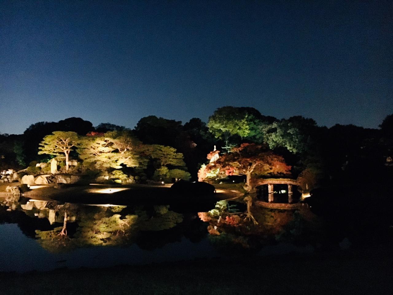 画像4: 夕方になりライトアップ開始!