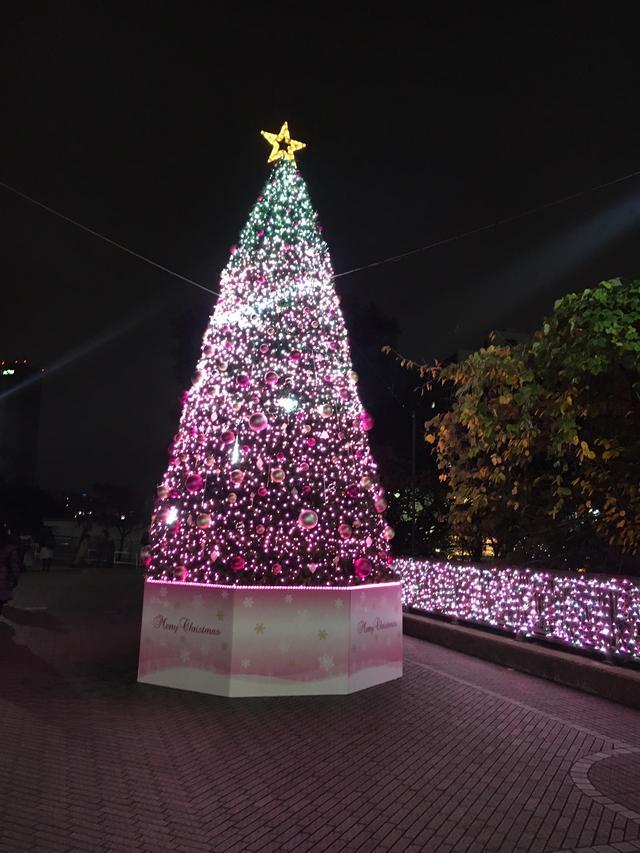 画像: 飯田橋RAMLAのクリスマスツリー