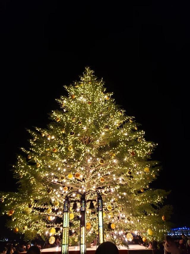 画像1: きらびやかな装飾のクリスマスツリー