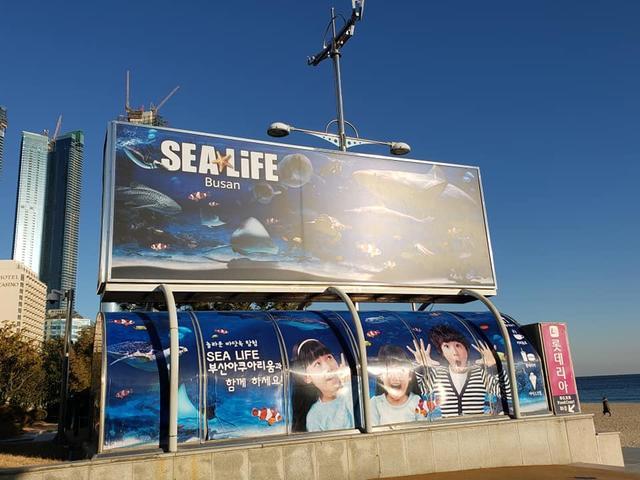 画像: 水族館は海雲台ビーチの目の前!