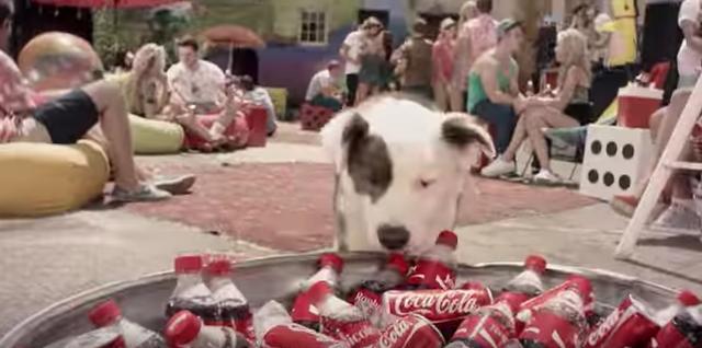 画像: 大量のコカコーラを発見!! youtu.be