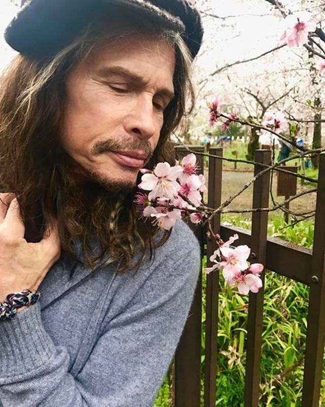 画像: 「桜の季節に来れてうれしい」