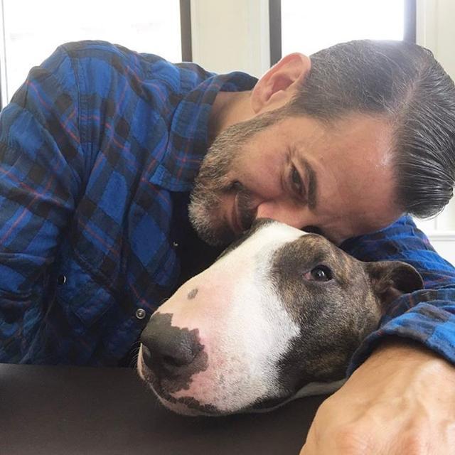 画像10: インスタアカを持っているセレブの愛犬7、フォロワー数ランキング
