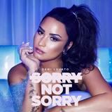 画像1: 新曲「Sorry Not Sorry」