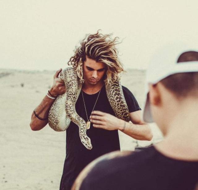 画像3: ジェイ×動物