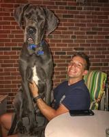 画像2: 大型犬あるある!?