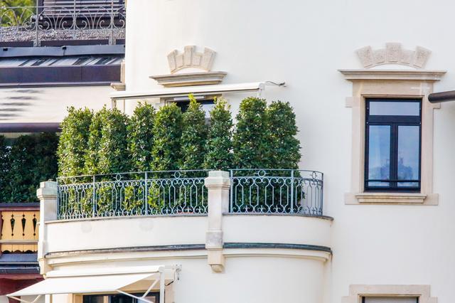 画像2: さすがセレブ!ミック・ジャガーがホテルのバルコニーに木を生やす