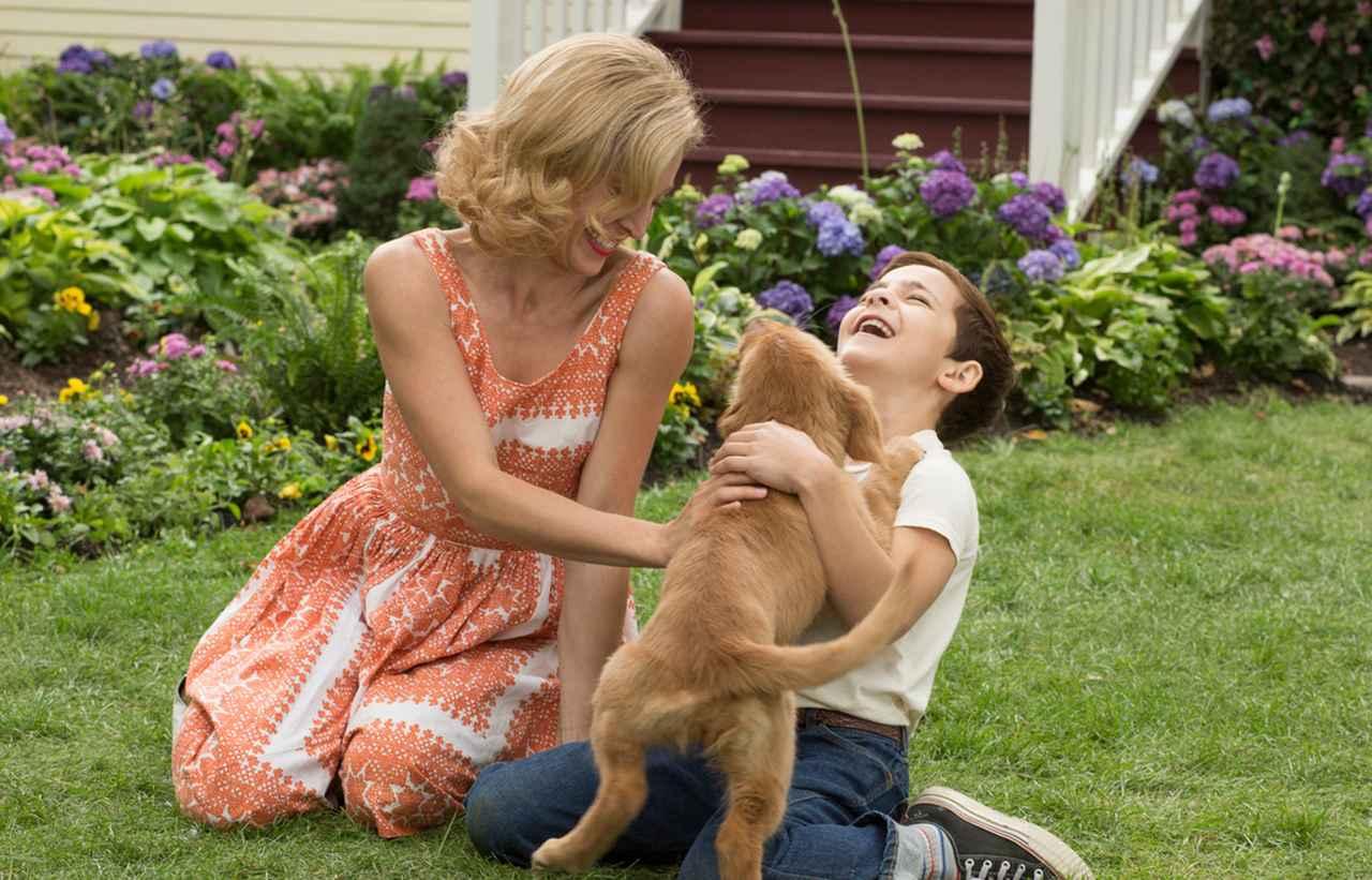 画像1: 原作は愛犬を亡くした恋人のためのベストセラー小説