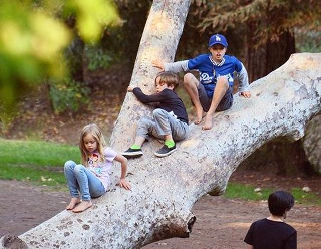 画像: 公園で遊ぶ、ブラッドとアンジェリーナの子供ヴィヴィアン、ノックス、シャイロ。