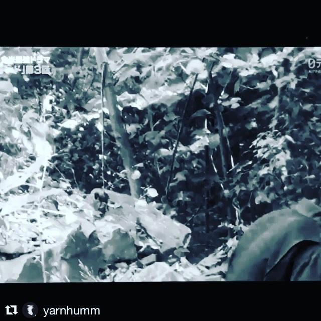 画像1: Instagram投稿の投稿者: norman reedusさん 日時: 2017 10月 15 3:58午後 UTC www.instagram.com