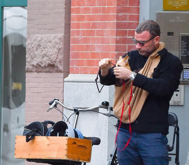 画像3: 愛犬とサイクリング中のリーヴ