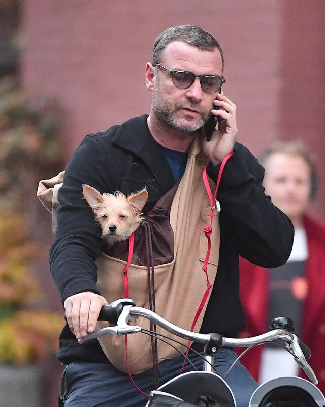 画像2: 愛犬とサイクリング中のリーヴ