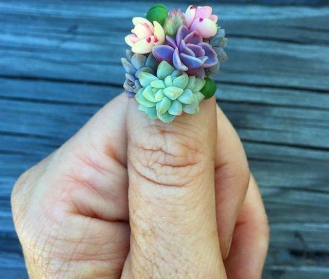 画像: 次のネイルトレンドはこれ!?リアル植物を生け花のように使った「多肉植物ネイル」