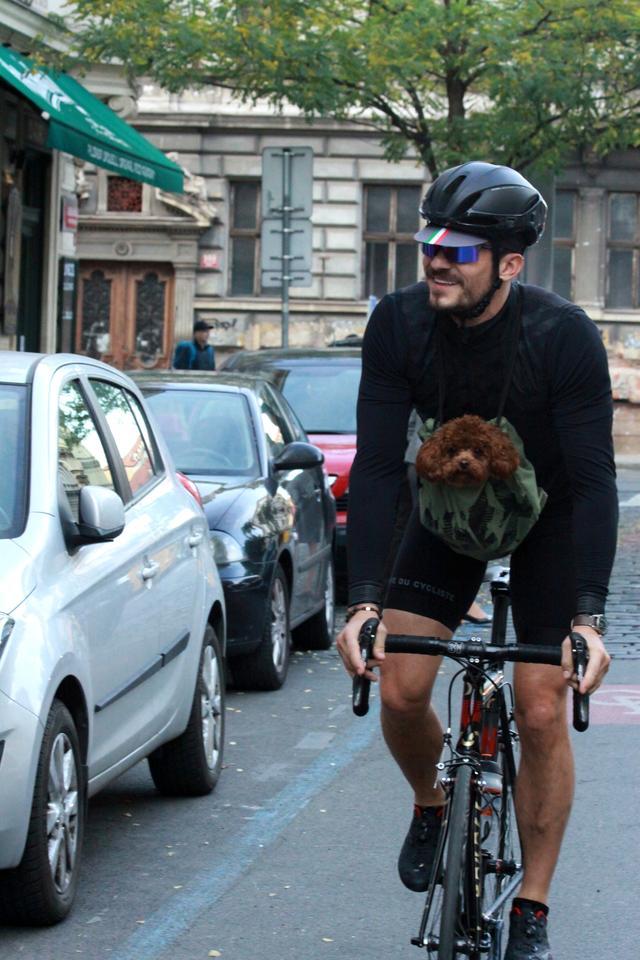 画像3: オーランド・ブルーム、愛犬と一緒に自転車に乗る姿がカンガルーのよう